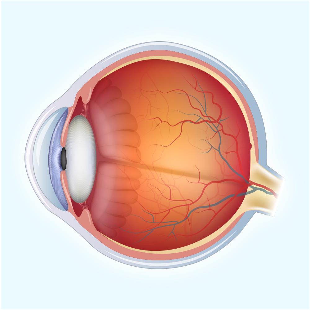 Laser Eye Treatment Amp Cataract Surgery Occ Lasik